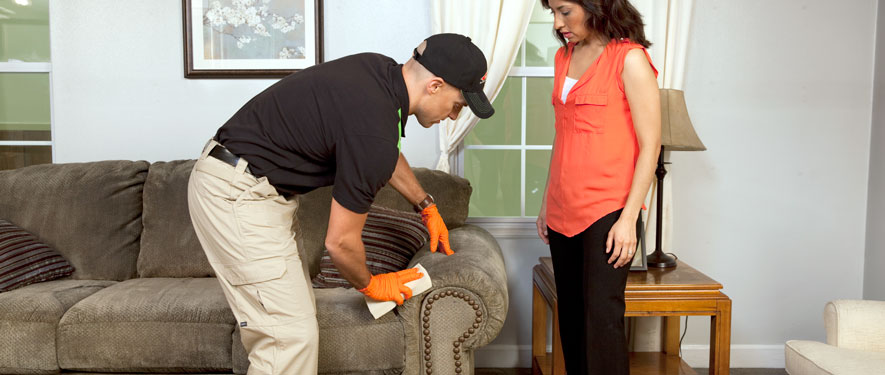 Allegan, MI carpet upholstery cleaning